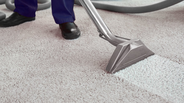 Our Services Refresh Carpet Cleaning